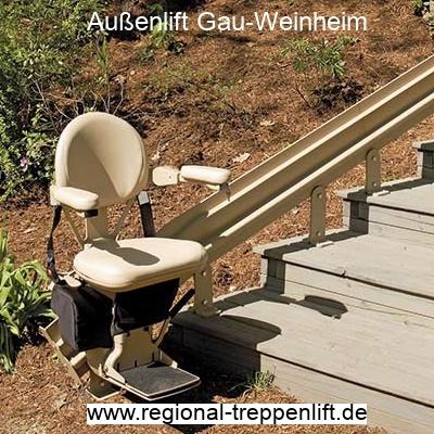 Außenlift  Gau-Weinheim