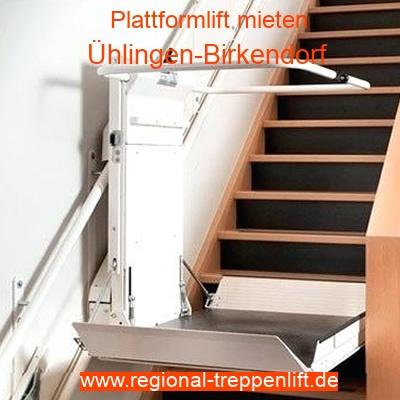 Plattformlift mieten in Ühlingen-Birkendorf